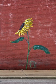 Sunflower Mural in Leavenworth
